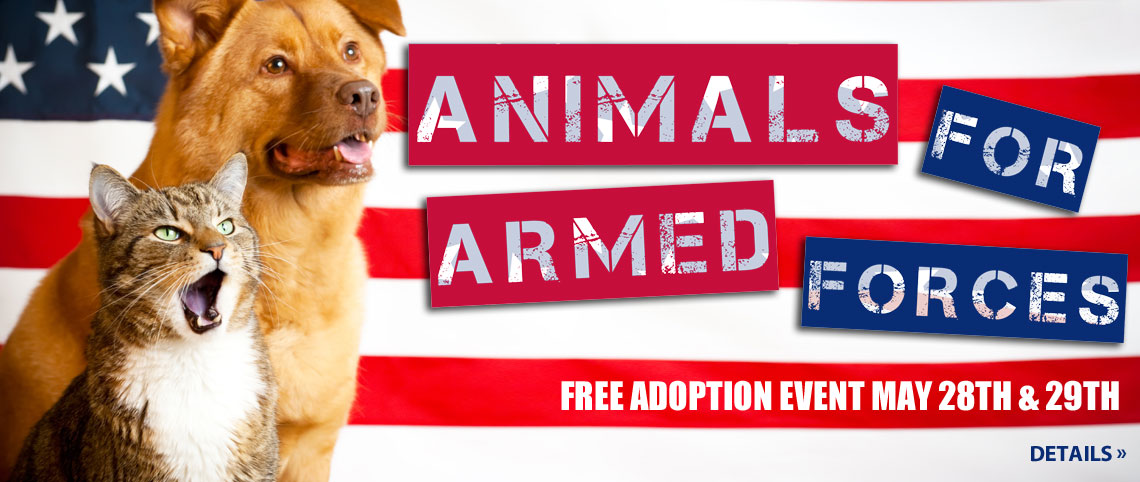 Animals For Armed Services
