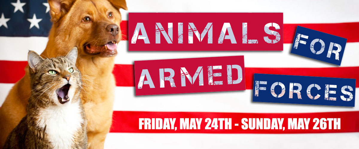 Animals For Armed Services 2019 v02